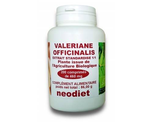Gingembre biologique 250 mg
