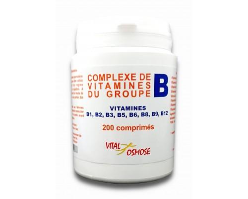 Pissenlit racine biologique 450 mg