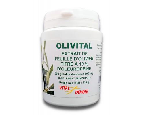 Konjac 450 mg - 100 gélules